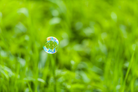 Soap bubble in front of green background