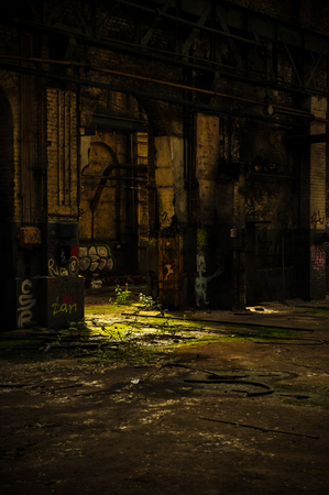 Sun spot on vegetation inside abandoned industrial building Banco de Imagens