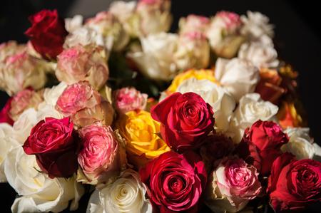 Naturaleza muerta ramo de rosas