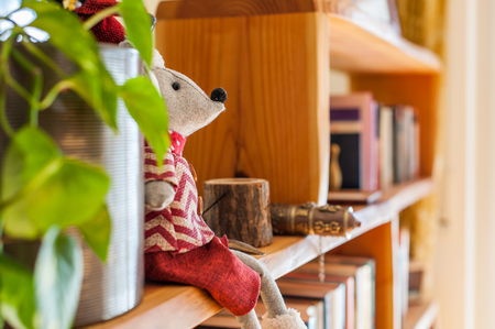 Interior design rack with books and plant Фото со стока