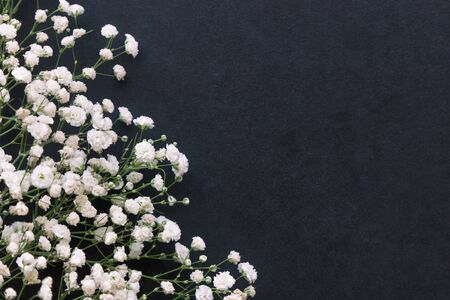 Gypsophila white baby's breath flower on black granite table background with copy space. Isolated beautiful wallpaper for Valentine or wedding backdrop design. Gypsophila flower is mean forever love. 版權商用圖片