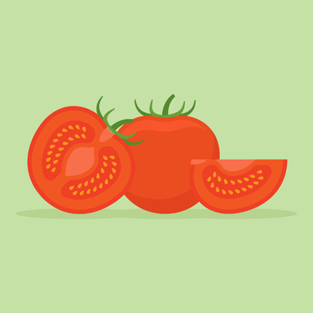 Set of whole and sliced tomatoes isolated on green background. Flat style vector illustration. Illustration