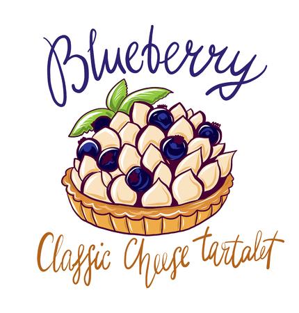 Blueberry classic cheese tartalet vector illustration. Illustration