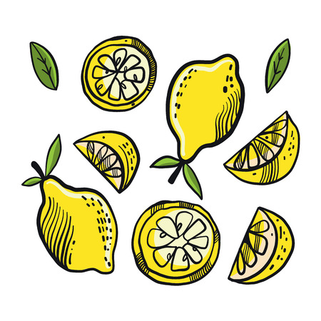 Fresh lemon fruits, collection of vector illustration isolated on background.