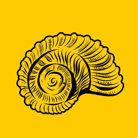 Sea shells vector sing. Hand drawn illustrations isolated on yellow background.
