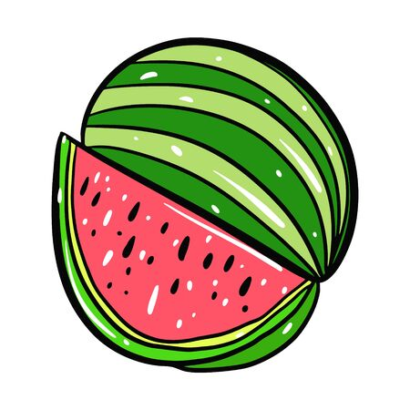 Watermelon vector illustration. Isolated on white background.