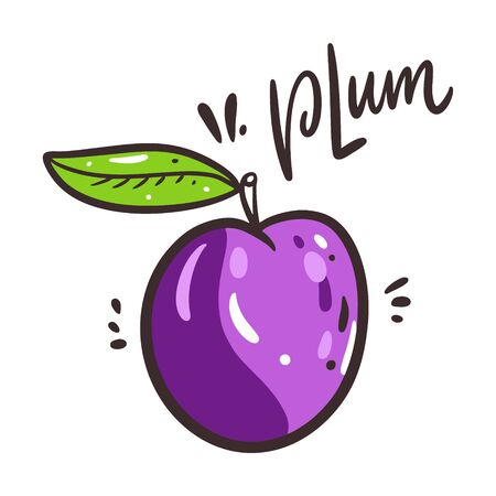 Plum vector illustration and lettering. Isolated on white background.