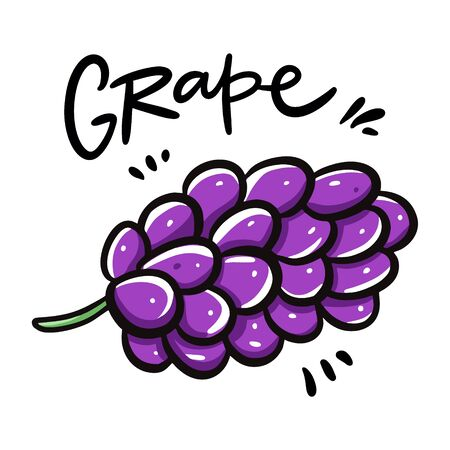 Grape vector illustration and lettering. Isolated on white background. Çizim
