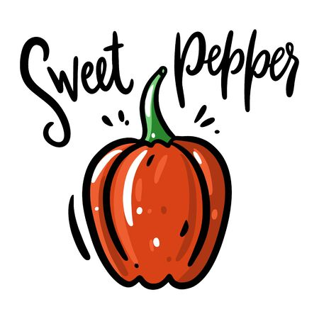 Sweet Pepper vector illustration and lettering. Isolated on white background.