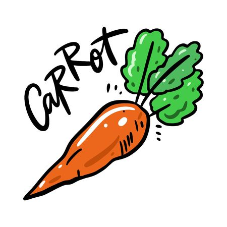 Carrot vector illustration and lettering. Isolated on white background.