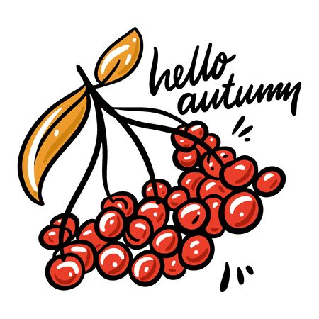 Hello Autumn hand drawn vector illustration and lettering. Isolated on white background. Cartoon style. Design for decor, cards, print, web, poster, banner, t-shirt