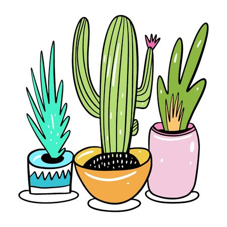 Potted house plants in cartoon style. Hygge home hand drawn vector illustration.