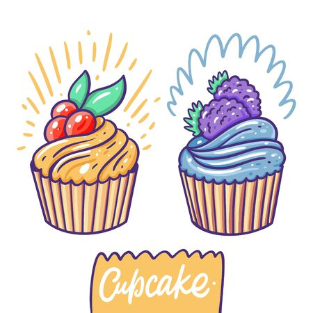 Cupcakes with cranberry and blackberry. Hand drawn vector illustration. Flat cartoon style. Isolated on white background.