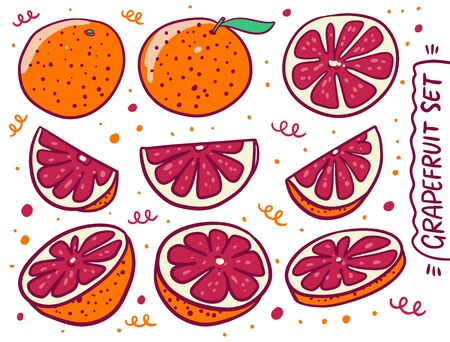 Whole and slice Grapefruit collection set in cartoon style. Vector illustration. Isolated on white background.