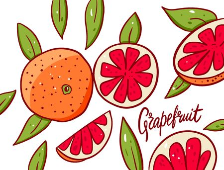 Cute Grapefruit poster. Vector illustration. Isolated on white background.