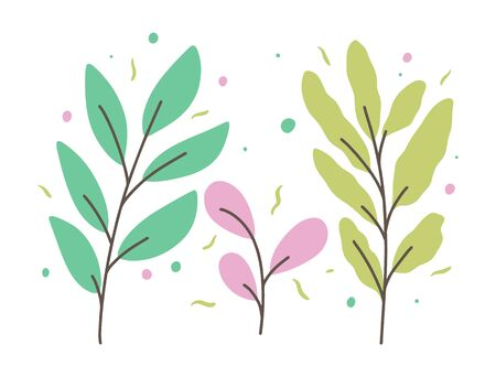 Three branches with leaves. Vector illustration in cartoon style. Isolated on white background. Design for potser, banner, web.