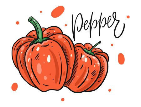 Red sweet pepper poster. Hand drawn vector illustration in cartoon style. Isolated on white background. Design for poster, banner, menu, market and web. Illustration