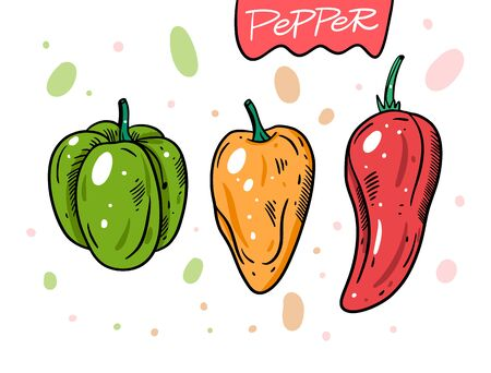 Different peppers. Green, yellow and red whole peppers. Hand drawn vector illustration in cartoon style. Isolated on white background. Design for poster, banner, menu, market and web. Ilustracje wektorowe