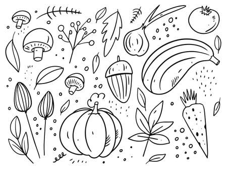Autumn elements. Leaves and food elements. Black color cartoon style.