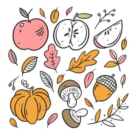 Autumn food elements set. Line art colorful style.