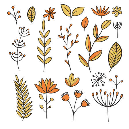 Autumn leaves and leaf elements. Line art colorful style.
