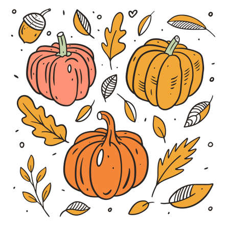 Pumpkins set and autumn leaves. Line art colorful style. Illusztráció