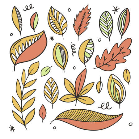 Autumn leaves set. Line art colorful style. Hand drawn sketch. Illusztráció