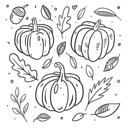 Pumpkins set black color line art. Hand drawn sketch.