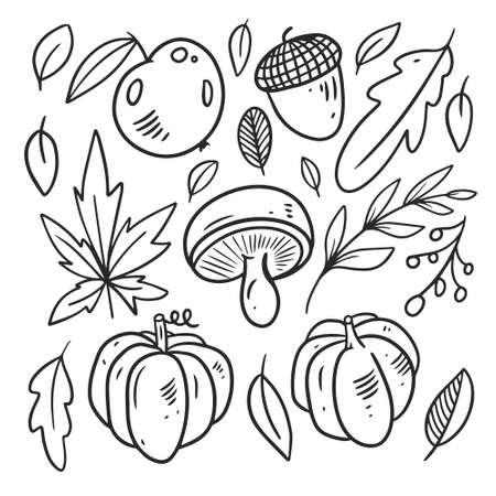 Autumn food elements set. Black color line art Hand drawn sketch.
