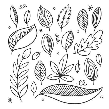 Autumn leaves set. Black line art. Hand drawn sketch.