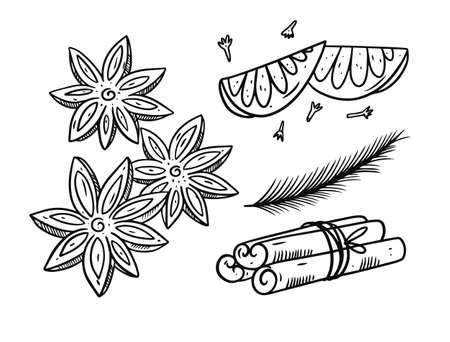 Spices for mulled wine. Hand drawing vector illustration. Black and white colors.