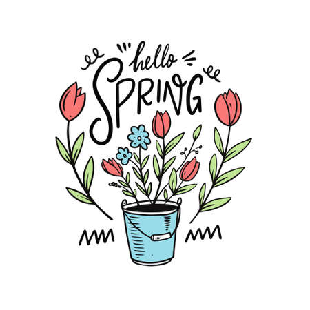 Hello Spring and flower in a bucket. Hand drawn cartoon style