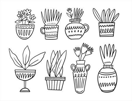 Home plants in pots. Hand drawn sketch. Black color vintage style.