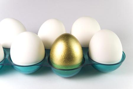 one golden egg Stock Photo