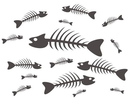 black and white fish skeletons on white background photo