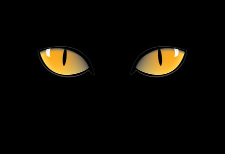 black panthers: orange cat eyes in dark nigth Illustration