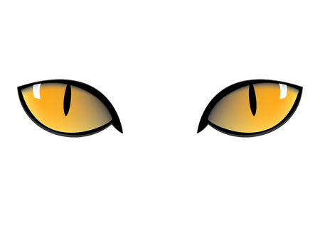 yellow cat eyes in black background