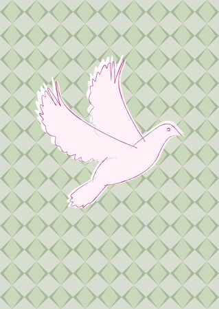 soaring: dove with green olive background