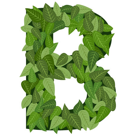 green swirl: leter B with leafs in vector mode