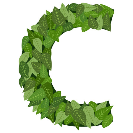leter C with leafs in vector mode Vector