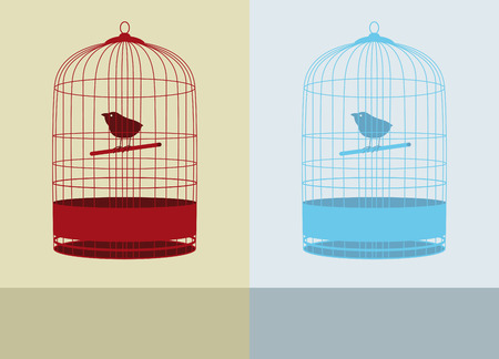 prison house: two birdcages and color background