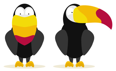 set of two toucans front and side view Vector