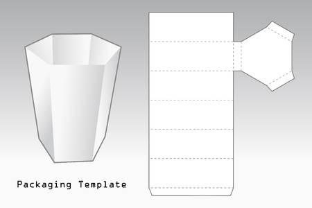 packaging template a case with six sides Vector