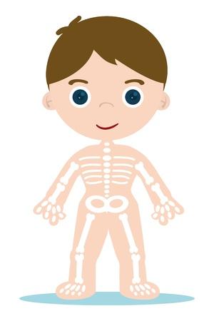 학교 학습에 대한 아이의 뼈 차트 일러스트