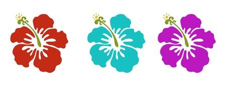 하와이 꽃 세트, 빨강, 녹색과 보라색
