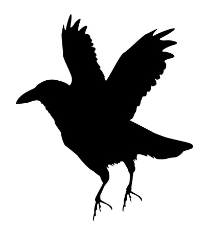 black raven silhouette, horror time