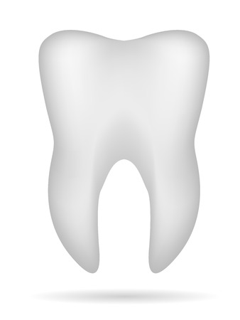 white 3d tooth with shadow Vector