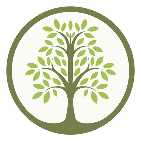 feuille arbre: Arbre vert de la vie dans un cercle Illustration