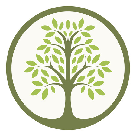 tree shape': Green tree of life in a circle Illustration
