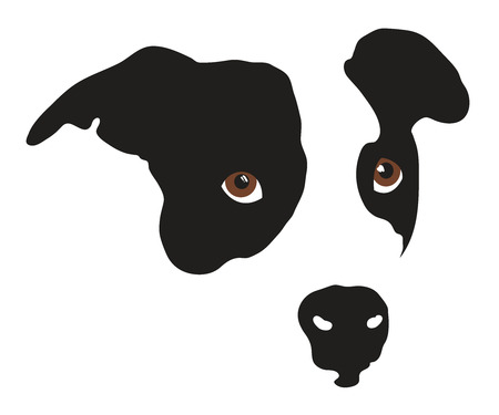 흑인과 백인의 귀여운 강아지 개 얼굴